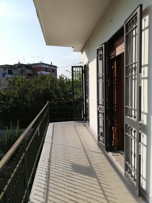 Vai alla scheda: Appartamento Affitto - Ottaviano (NA) - Rif. 489907