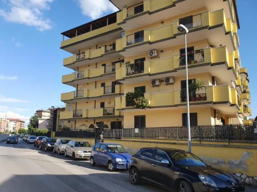 Vai alla scheda: Duplex Vendita - Caserta (CE) | Centro - Rif. 290R