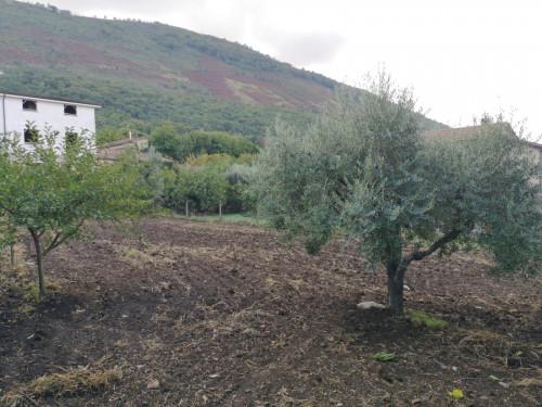 Vai alla scheda: Terreno  Residenziale Vendita - Sant'Agata de' Goti (BN) | Bagnoli - Rif. 60D