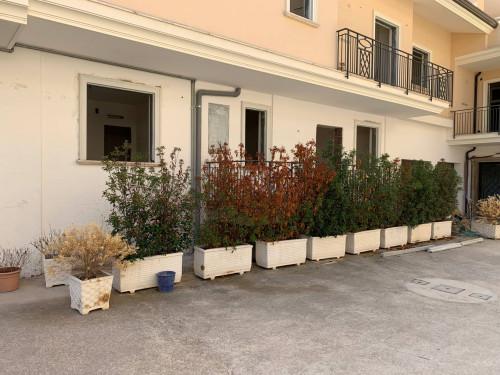 Vai alla scheda: Appartamento Vendita - Santa Maria Capua Vetere (CE) - Rif. 110 moc