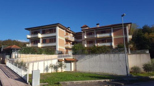Vai alla scheda: Appartamento Vendita - Candida (AV) - Rif. 8590
