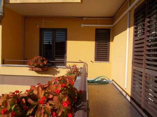Vai alla scheda: Appartamento Affitto - San Prisco (CE)   Zona Centrale - Rif. 500AB