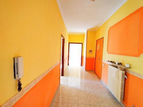 Vai alla scheda: Appartamento Vendita - Casoria (NA) - Rif. 24