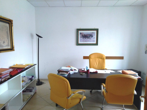 Vai alla scheda: Appartamento Affitto - Nola (NA) - Rif. 192711