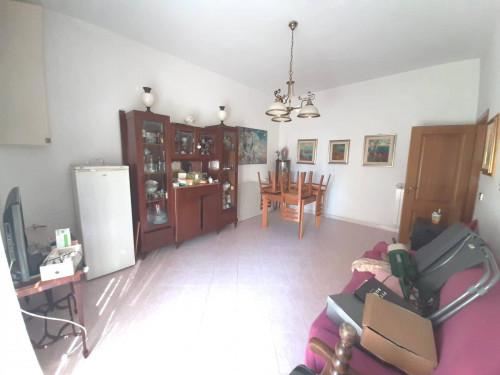 Vai alla scheda: Appartamento Affitto - Nola (NA) - Rif. 192728