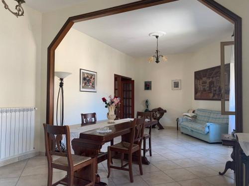 Vai alla scheda: Appartamento Vendita - Santa Maria Capua Vetere (CE) - Rif. 63 ver