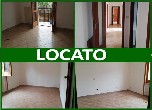 Vai alla scheda: Appartamento Affitto - Saviano (NA) - Rif. 192947