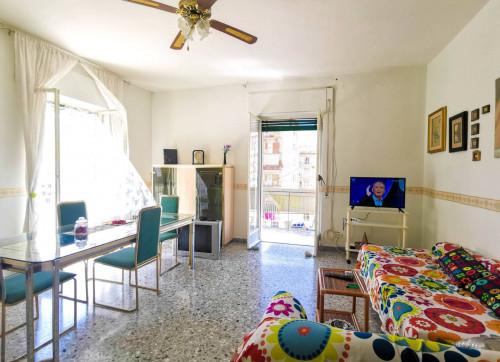 Vai alla scheda: Appartamento Vendita - Santa Maria Capua Vetere (CE) | Zona Corso - Rif. 68SMCV