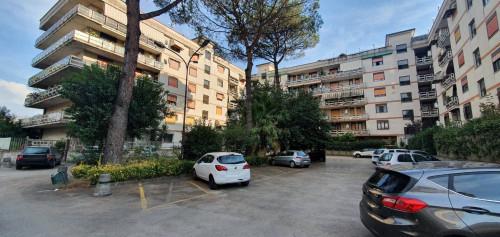 Vai alla scheda: Appartamento Vendita - Caserta (CE) | Lincoln - Rif. 225PS