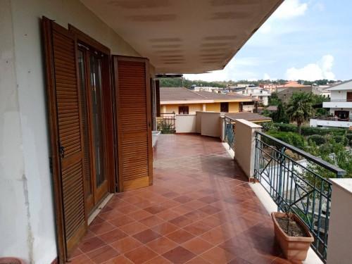Vai alla scheda: Appartamento Affitto - Caserta (CE) | Casola - Rif. 325RA