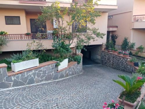 Vai alla scheda: Appartamento Affitto - Caserta (CE) - Rif. 440DF