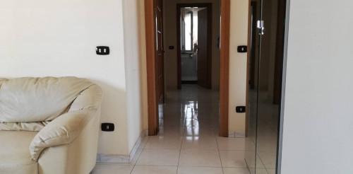 Vai alla scheda: Appartamento Affitto - Marigliano (NA) - Rif. 190658