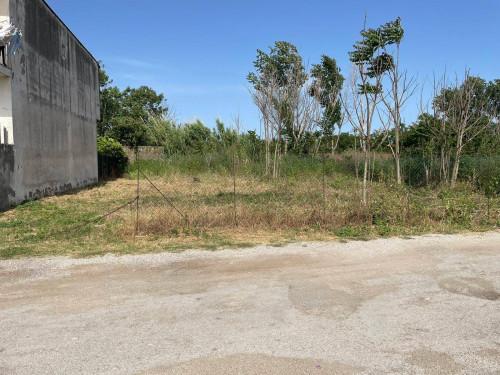 Vai alla scheda: Terreno Agricolo Vendita - Frattamaggiore (NA) - Rif. 8511