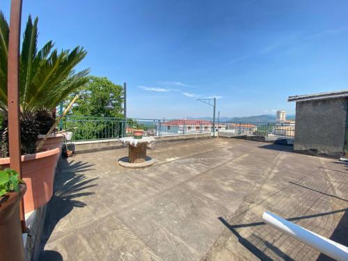 Vai alla scheda: Appartamento Vendita - Carbonara di Nola (NA) - Rif. 190721
