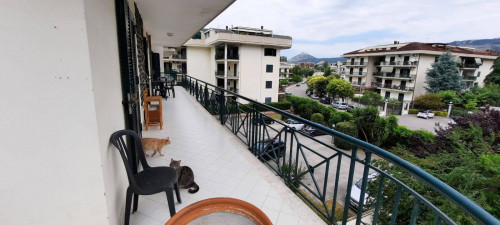Vai alla scheda: Appartamento Vendita - Caserta (CE) | Caserta 2 (Cerasola) - Rif. 259VA