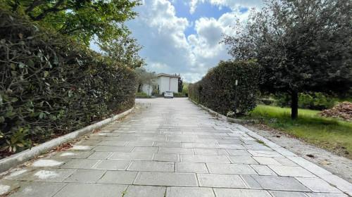 Vai alla scheda: Appartamento Affitto - Monteforte Irpino (AV) | Aldo Moro - Rif. 11264