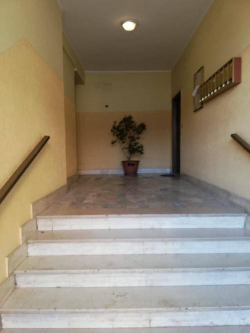 Vai alla scheda: Appartamento Affitto - Caserta (CE)   Acquaviva - Rif. 230B