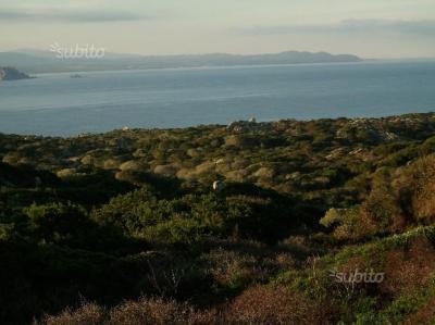 Vai alla scheda: Terreno Agricolo Vendita Santa Teresa Gallura