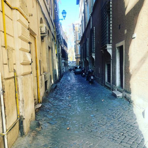 Vai alla scheda: Negozio Vendita Roma