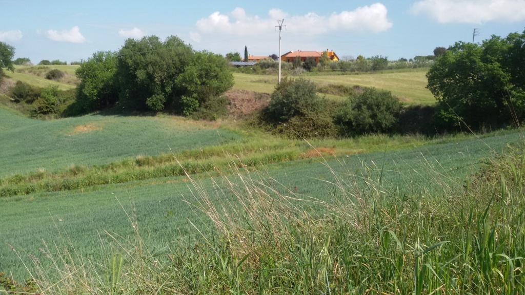 Terreno Agricolo in vendita a Tarquinia, 9999 locali, zona Località: Campagna, prezzo € 100.000 | CambioCasa.it