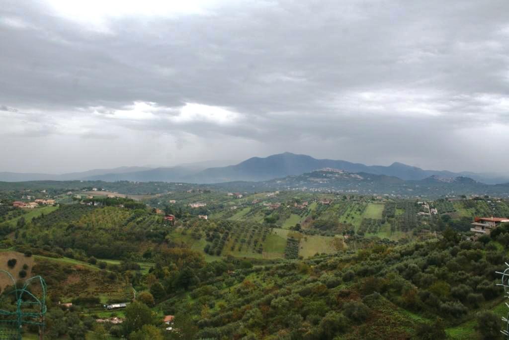 Bilocale Mentana Via Menotti Garibaldi 8