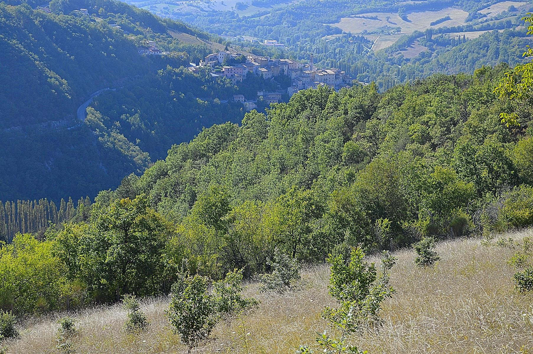 Terreno Agricolo in vendita a Preci, 9999 locali, zona Località: Preci-Centro, prezzo € 55.000 | Cambio Casa.it