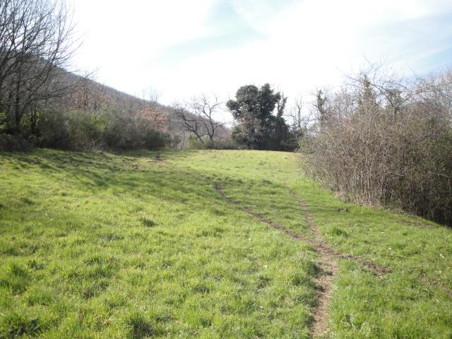 Terreno Agricolo in vendita a Viterbo, 9999 locali, zona Zona: Bagnaia, prezzo € 19.500   Cambio Casa.it