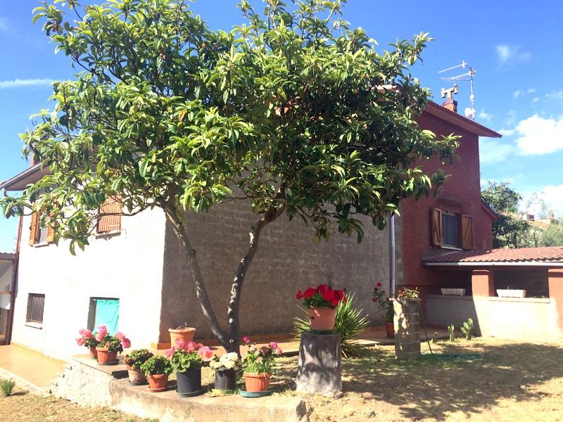 Rustico / Casale in vendita a Viterbo, 6 locali, zona Zona: Periferia, prezzo € 250.000   CambioCasa.it