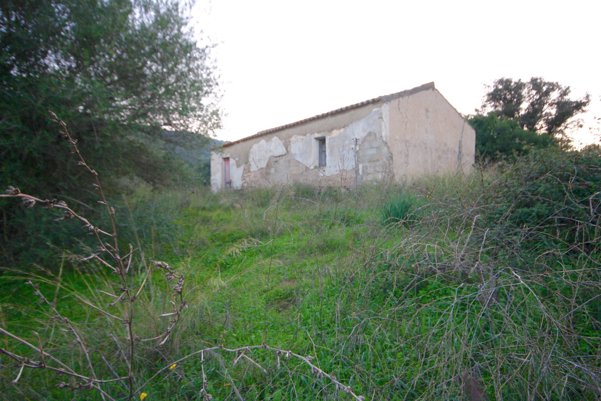 Terreno Agricolo in vendita a , 9999 locali, zona Località: Putzolu, prezzo € 150.000 | PortaleAgenzieImmobiliari.it