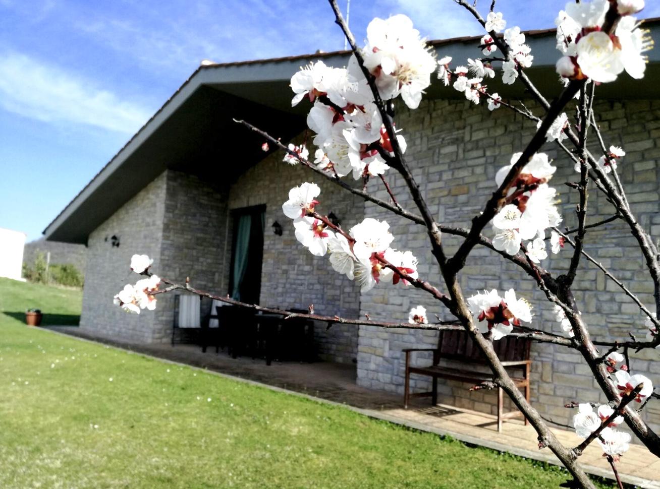 Villa in vendita a Torricella in Sabina, 8 locali, zona Località: OrnaroBasso, prezzo € 300.000 | CambioCasa.it