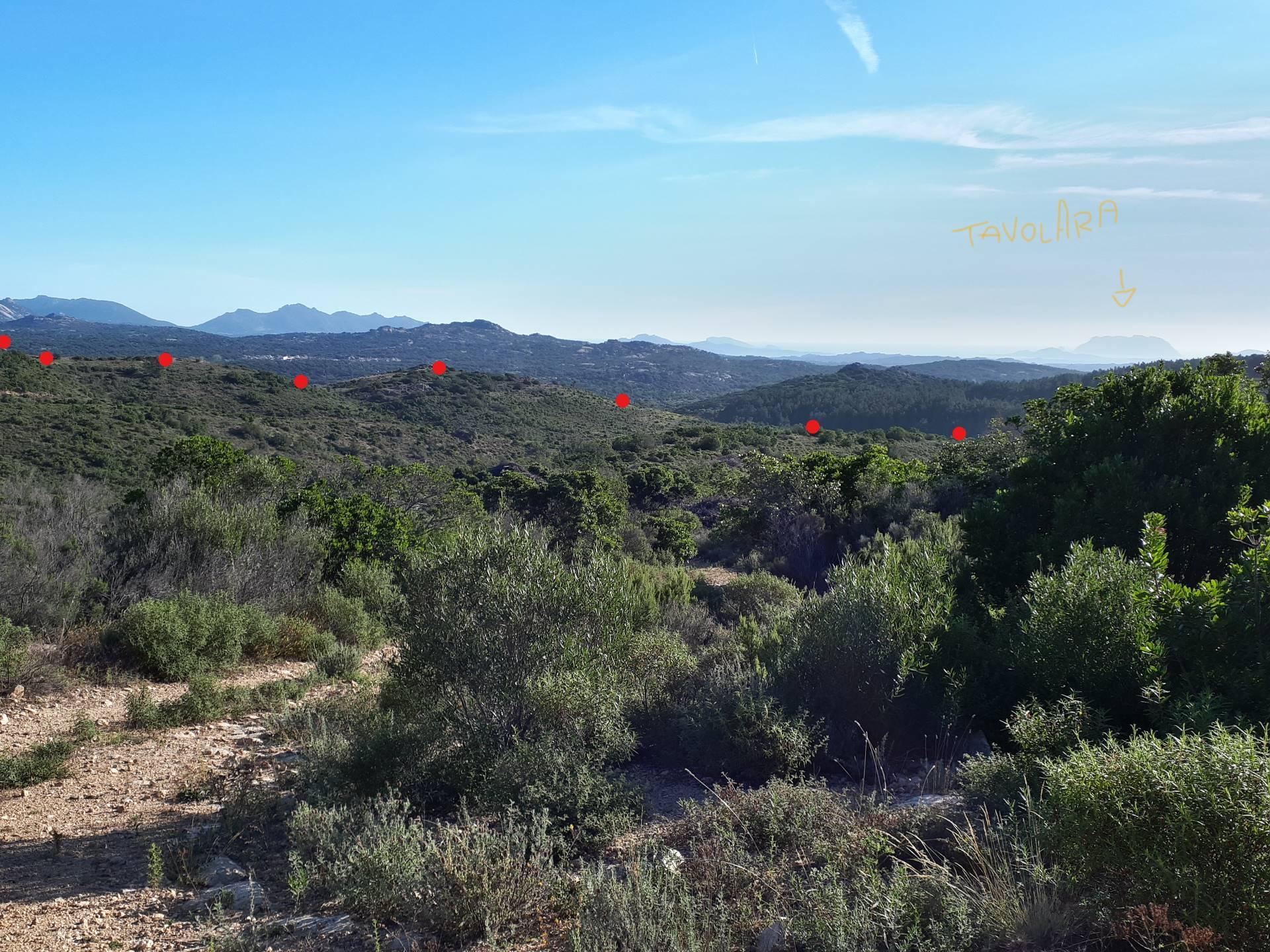 Terreno Agricolo in vendita a Berchidda, 9999 locali, prezzo € 475.000 | PortaleAgenzieImmobiliari.it