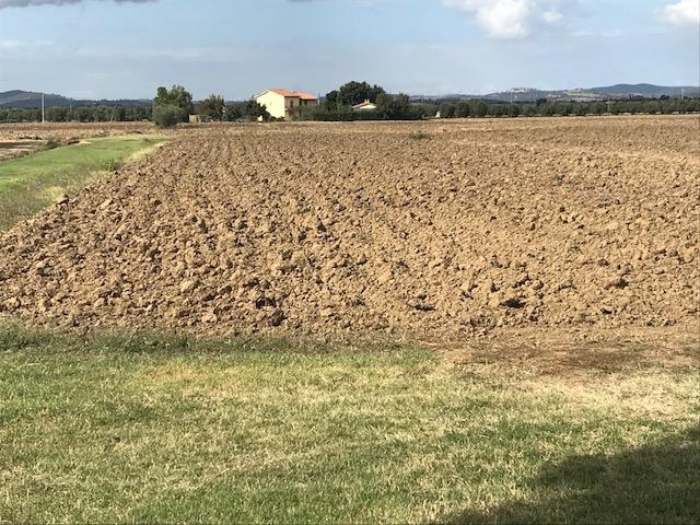 Terreno Agricolo in vendita a Orbetello, 9999 locali, zona Località: LaPolverosa, prezzo € 100.000 | CambioCasa.it
