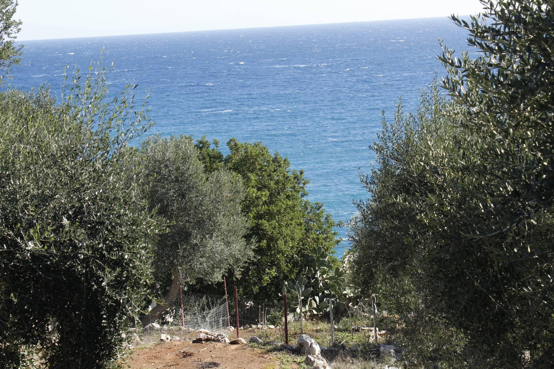 Terreno Edificabile Residenziale in vendita a Andrano, 9999 locali, zona Località: MarinadiAndrano, prezzo € 45.000 | CambioCasa.it