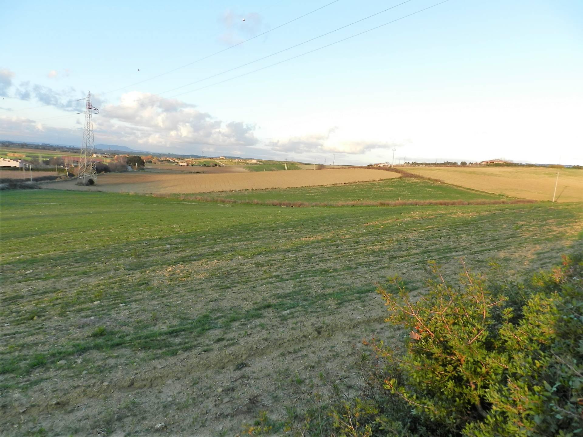 Terreno Agricolo in vendita a Tarquinia, 9999 locali, zona Località: Campagna, prezzo € 35.000 | CambioCasa.it