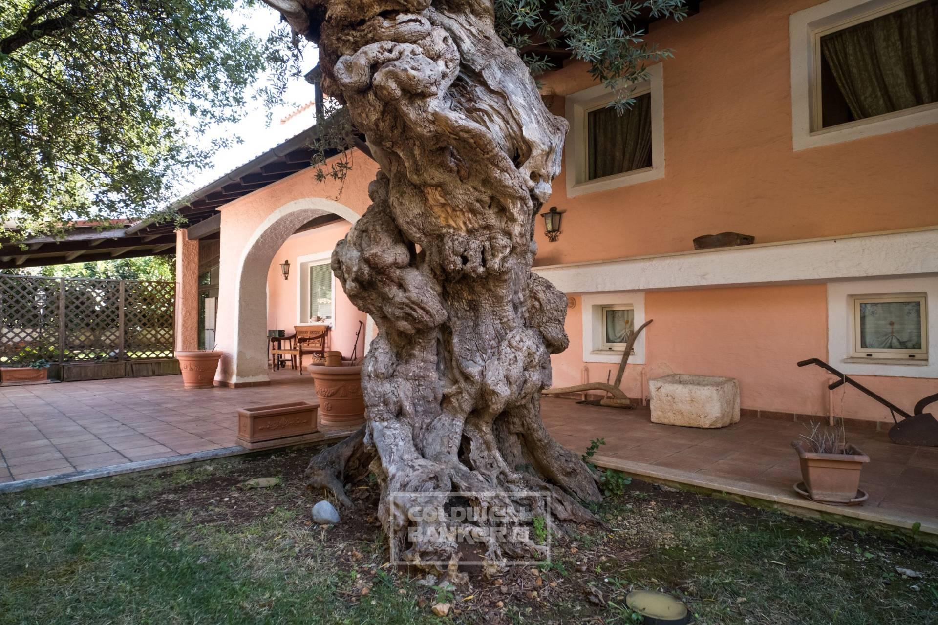 Villa in vendita a Casamassima (BA)