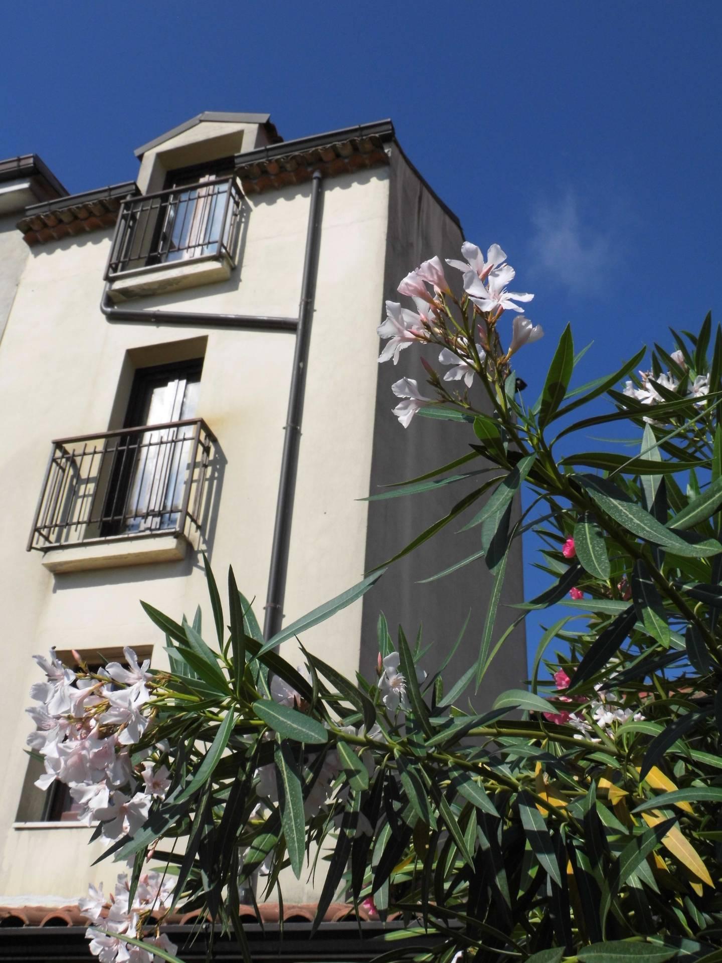 Appartamento in vendita a San Giovanni a Piro, 3 locali, prezzo € 95.000 | CambioCasa.it