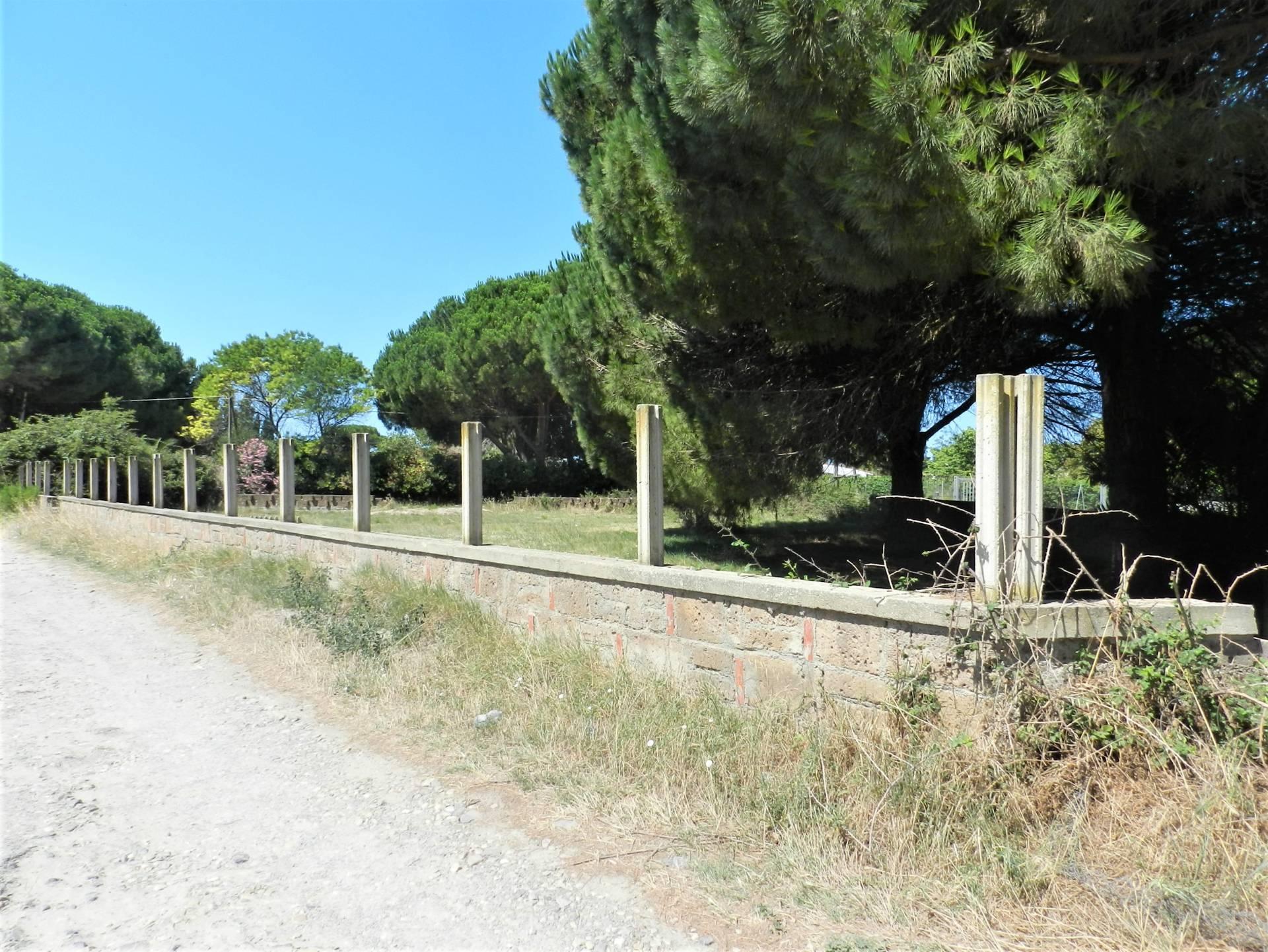 Terreno Agricolo in vendita a Tarquinia, 9999 locali, zona Località: SanGiorgio, prezzo € 25.000 | CambioCasa.it