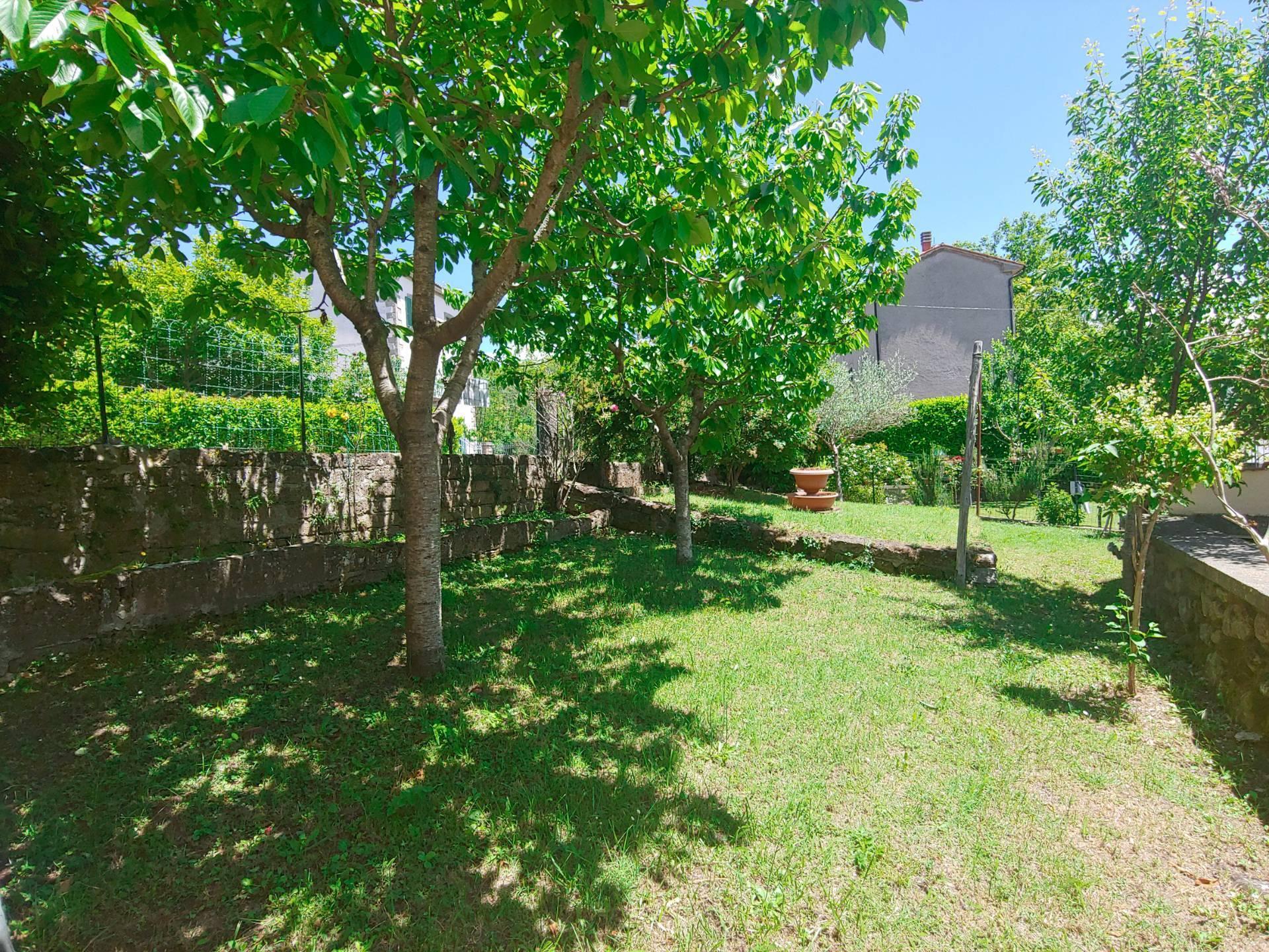 Appartamento in vendita a Santa Fiora, 3 locali, zona Zona: Bagnore, prezzo € 85.000 | CambioCasa.it