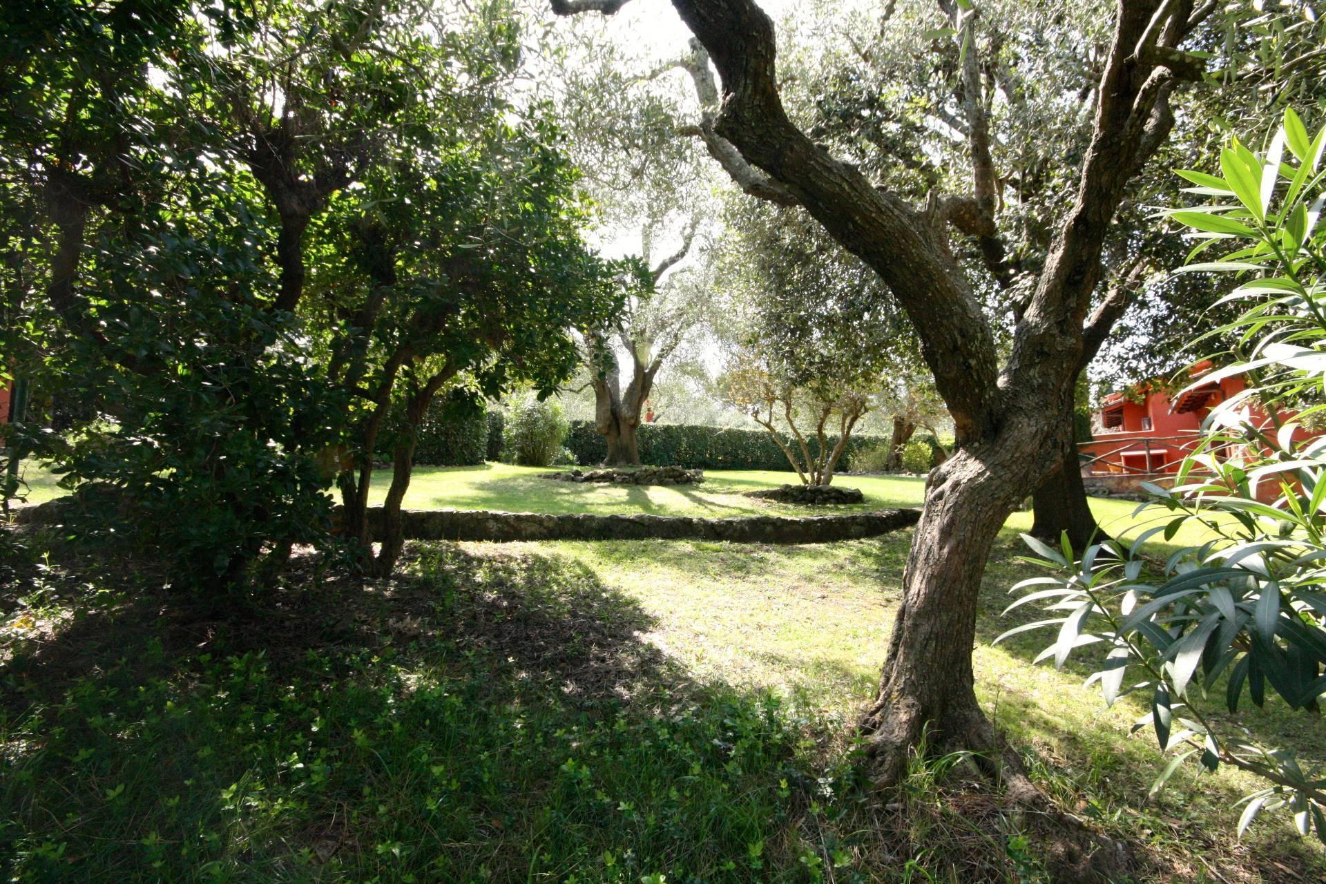 Appartamento in vendita a Orbetello, 6 locali, zona donia, prezzo € 410.000 | PortaleAgenzieImmobiliari.it