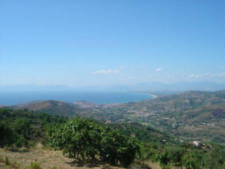 Terreno Agricolo in vendita a Prignano Cilento, 9999 locali, prezzo € 13.000 | CambioCasa.it