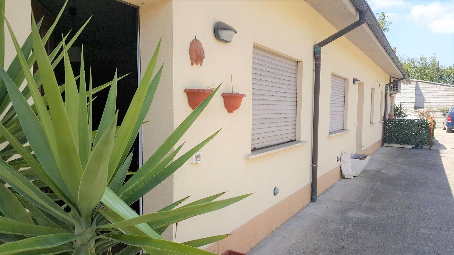 Appartamento, 30 Mq, Affitto - Viterbo (Viterbo)