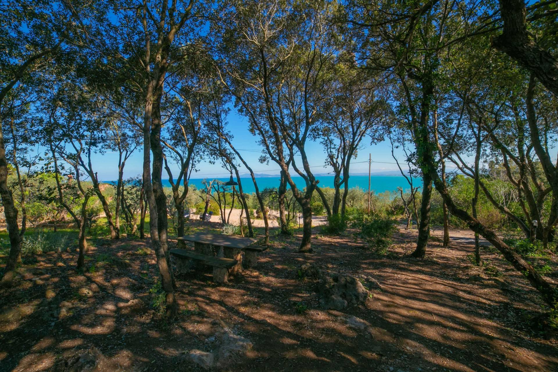 Villa in affitto a Monte Argentario, 7 locali, zona Località: S.aLiberata, prezzo € 10.000   CambioCasa.it