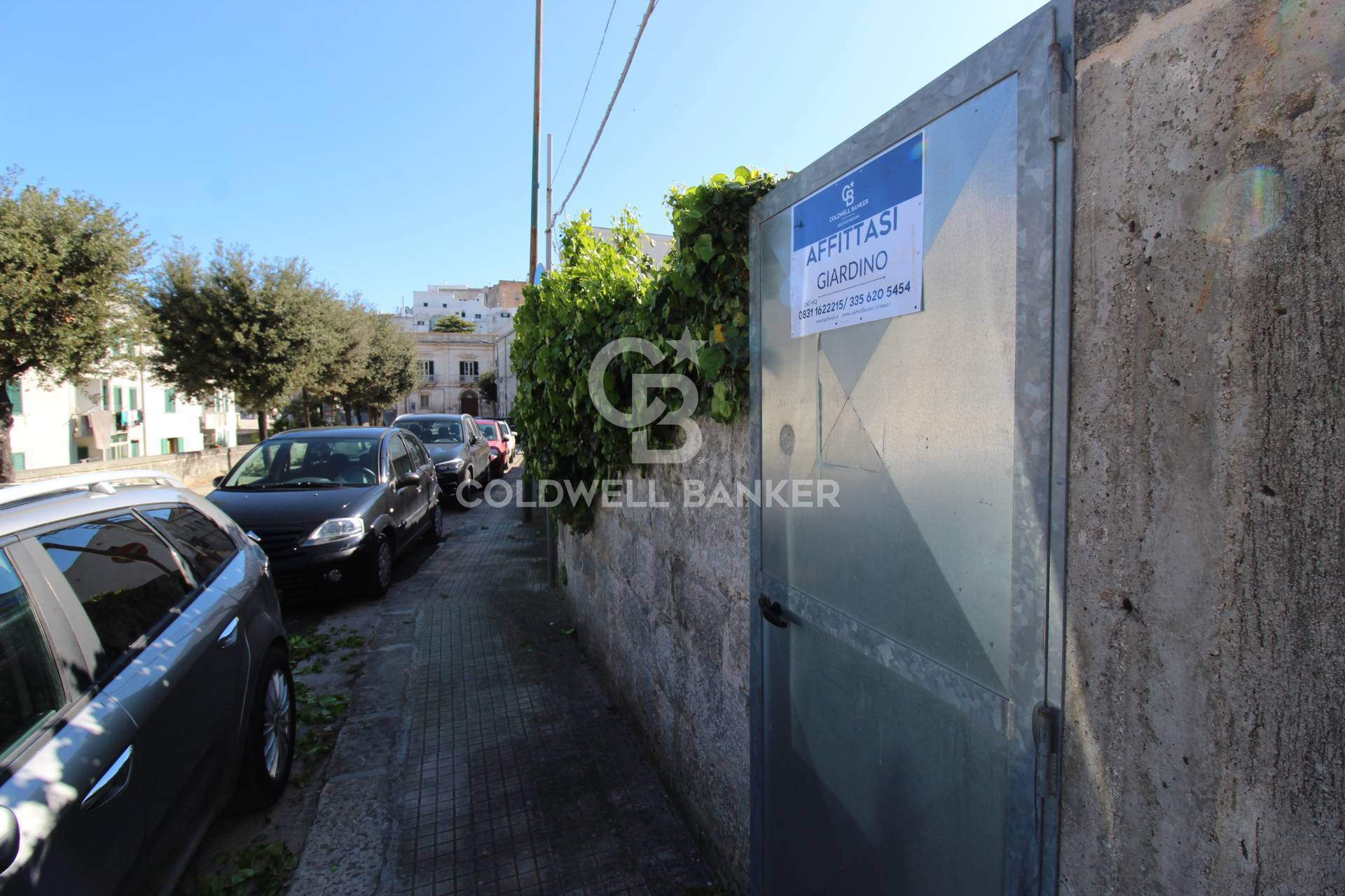 Terreno Agricolo in affitto a Ostuni, 9999 locali, prezzo € 800   CambioCasa.it