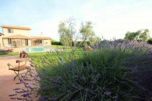 Vai alla scheda: Rustico / Casale / Corte Vendita - Capalbio (GR) | Borgo Carige - MLS CBI026-26-81 R 1256