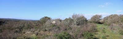 Terreno agricolo in Vendita a Arzachena