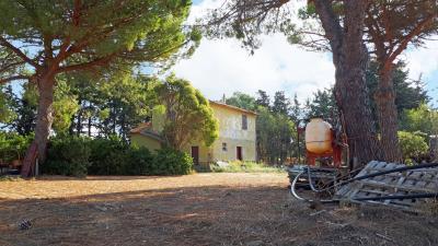 Rustico/Casale/Corte in Vendita a Tarquinia