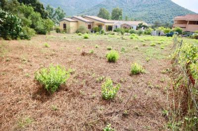 Terreno Edificabile in Vendita a Loiri Porto San Paolo