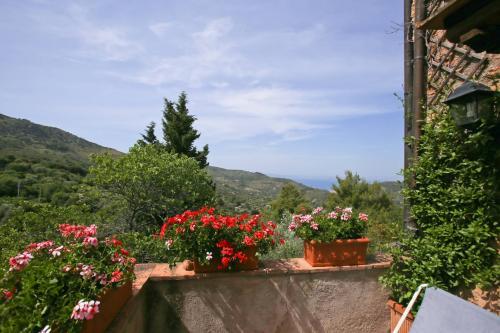 Vai alla scheda: Villa singola Affitto - Monte Argentario (GR) | Porto Santo Stefano - MLS CBI007-87-A228