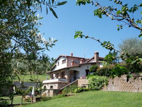 Rustico/Casale in Vendita a Civitella d'Agliano