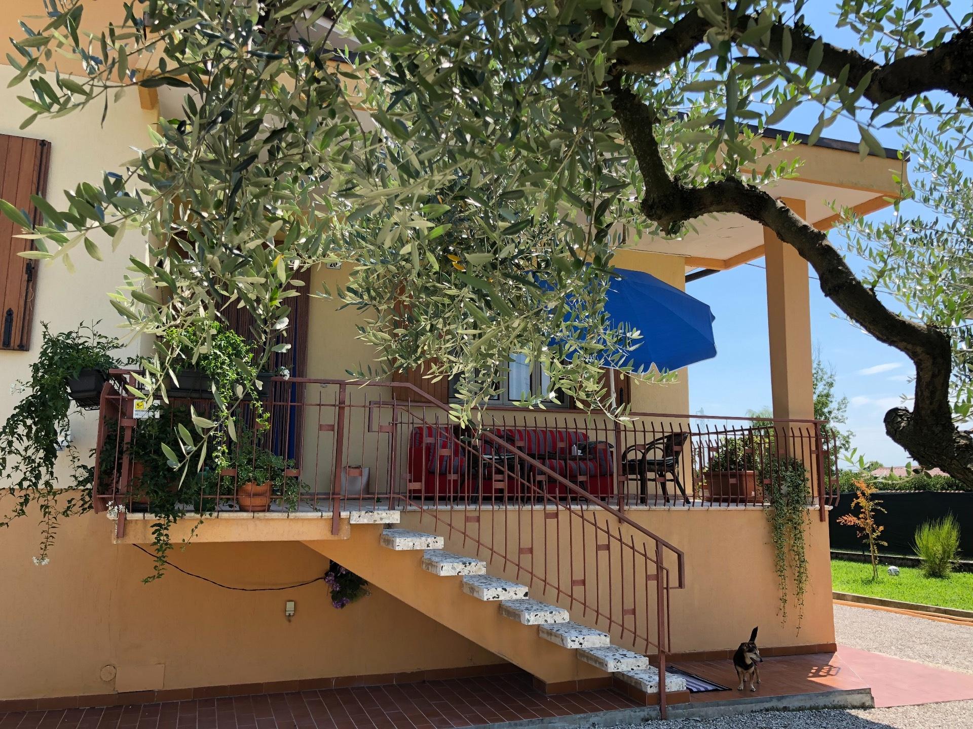 Soluzione Indipendente in vendita a Giavera del Montello, 20 locali, prezzo € 280.000 | CambioCasa.it